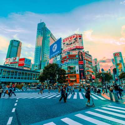 The Japanese Internship Guide: How To Find The Perfect Path for You!
