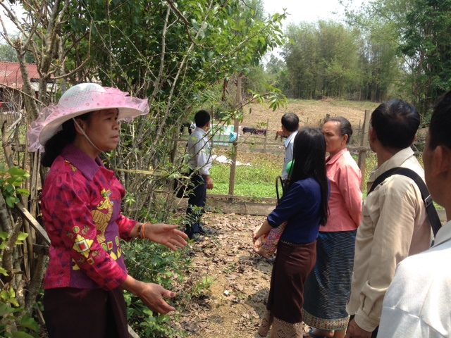 sa-exchange-on-living-fence-mtcp2-laos-workshop