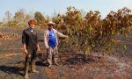 อ.พบพระ ไฟไหม้ต้นอะโวคาโดพันธุ์ดีสวนลุงเด่น เสียหายกว่า400ต้น พร้อมด้วยระบบท่อส่งน้ำเสียหายยับ