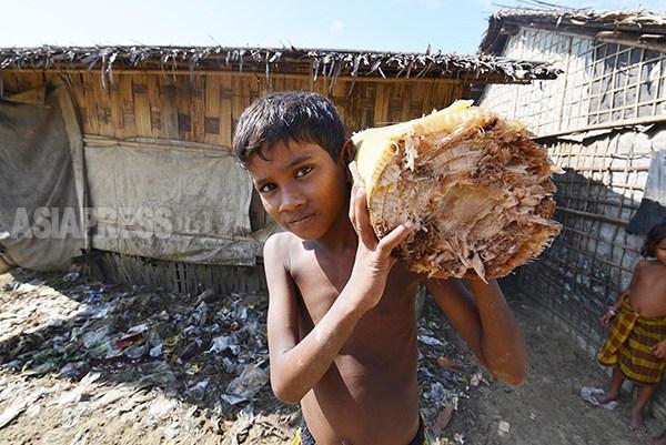<特別連載>ミャンマーのロヒンギャ問題とは何か? (25) ロヒンギャへの無関心と誤解~ 少数民族間でも 宇田有三