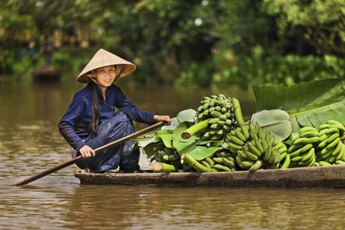 A glimpse of southern Vietnam