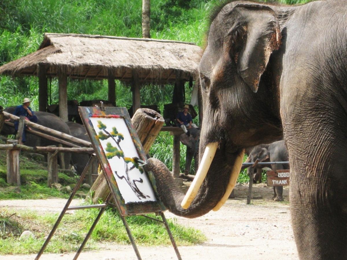 Taungoo City - Myanmar Tour Information - Asia Tour Advisor