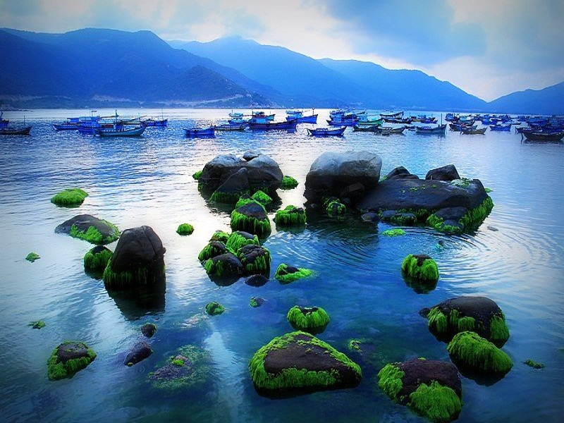 The-simple-and-wild-Binh-Hung-Island5