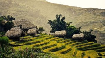 Sapa Easy Trekking By Express bus 2 Days