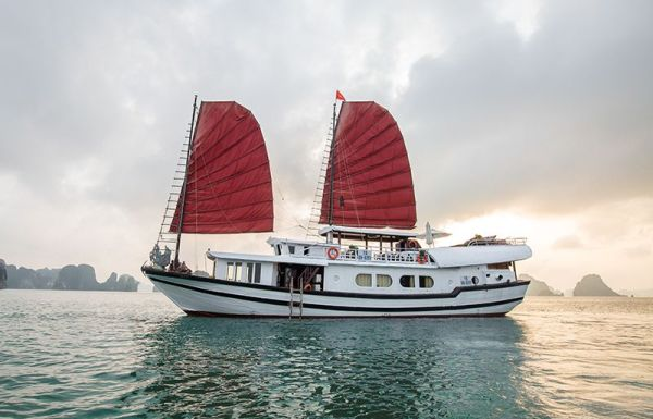V'Spirit Premier Cruise Halong, Free Hanoi Airport Transfer. V'Spirit Premier Cruise reviews