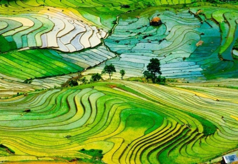 Top-4-amazing-travel-experiences-from-Vietnam-tours-reviews-3