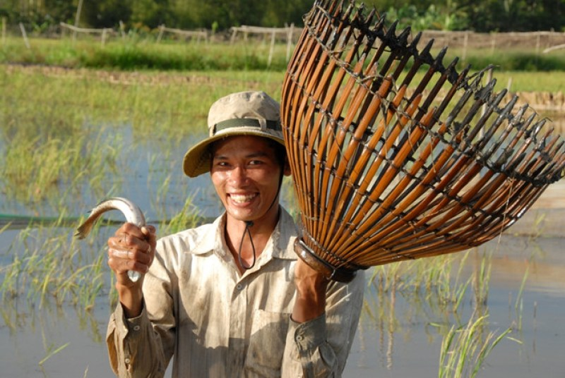 Why-should-Australian-tourists-make-Mekong-Delta-tours-once-3