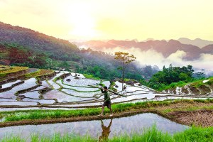 Best of Nature in Northern Vietnam 6 Days