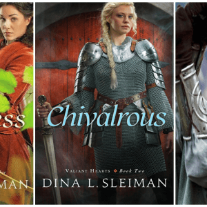 fairytale, chivalry, Robin Hood, female warrior, katie mcgrath, bethany house, ya fiction