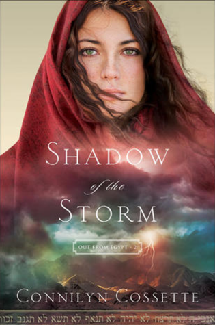 Shadow of the Storm|Book Review
