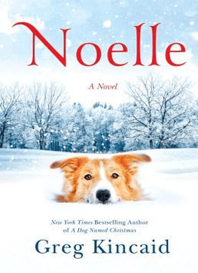 Noelle by Greg Kincaid|Book Review