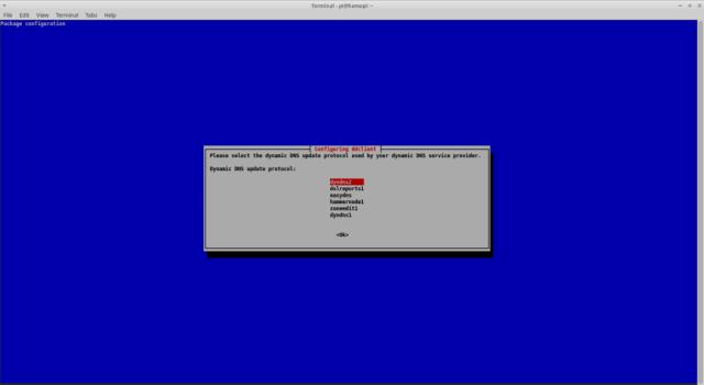 Run a DynDNS client under Raspbian - DynDNS Protocol