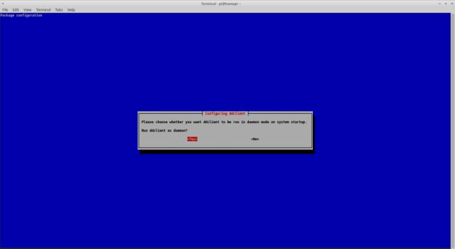 Run a DynDNS client under Raspbian - Daemon mode