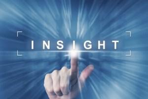 Understanding and Insight