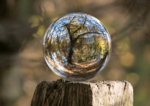 Nature seen through ones filter