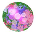 Floral Bullet 5
