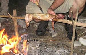 Spit Cooking primitive