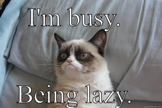 Image result for lazy meme