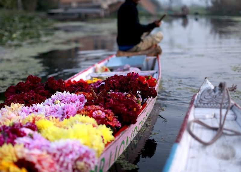 20 Most Beautiful Pictures Of Houseboats At Dal Lake Srinagar