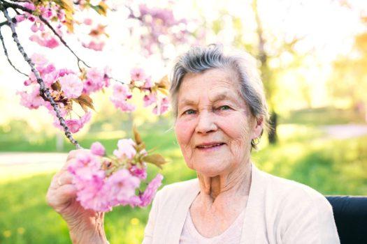 Senior Dating Online Site No Sign Up
