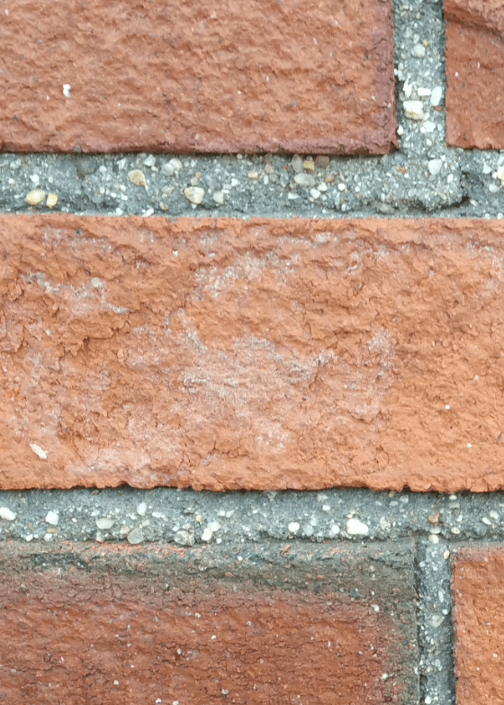 You can clearly see the colored sand grains in this high-resolution photo. Note how the mortar in this photo is a much darker gray than the white brick photo above. Photo credit: Richard K.