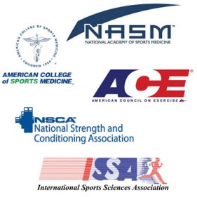 ACE Personal Trainer Practice Exam (Updated 2019)