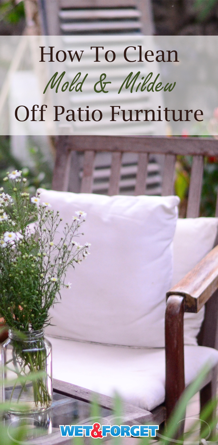 wet forget outdoor mildew remover for
