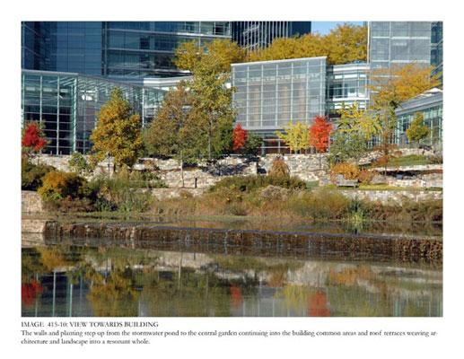 Building Wildlife Pond