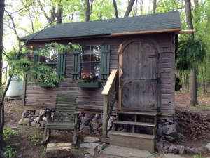 Cabin in the woods   Sally Paradysz