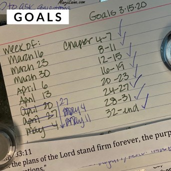 showing example of how to accomplish writing goals by Denise M. Colby