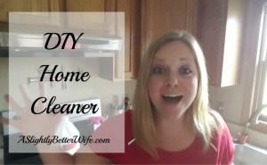 The Best DIY Home Cleaner Using 2 (or 3) Simple Ingredients
