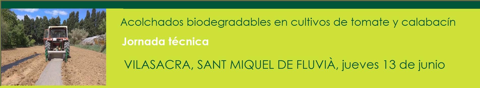 Jornada técnica aplicación de acolchado biodegradable en cultivo