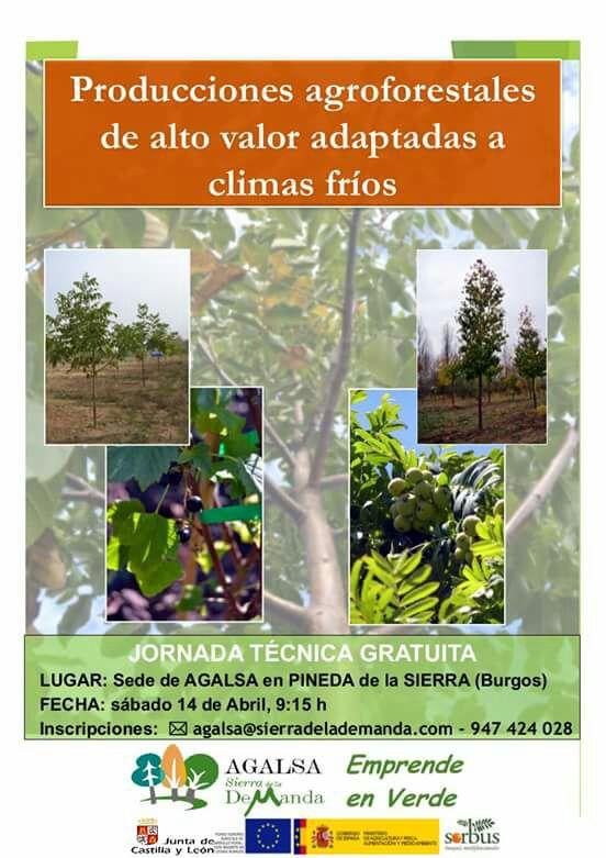 Jornada técnica Agalsa: producciones agroforestales de alto valor