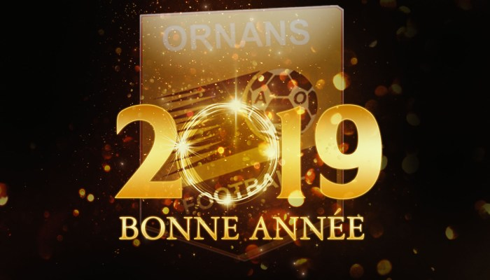 ASO voeux 2019