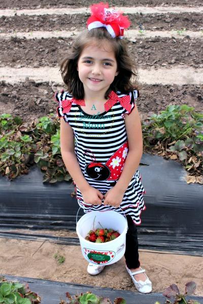 strawberry picking houston tx