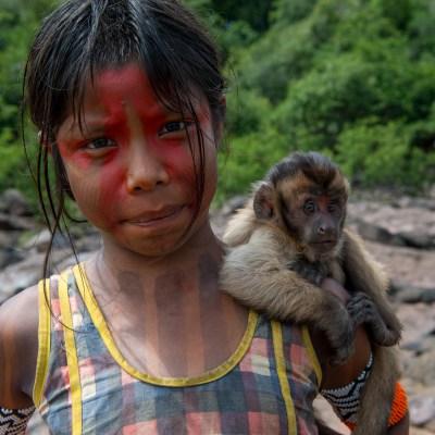 Teaching Children About the Amazon Rainforest