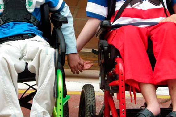 Misión, fines y valores. ayuda a discapacitados