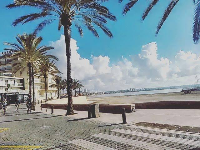 Aprire un'attività a Palma de Mallorca 2- aspassoperlaspagna.it