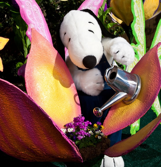2nd Annual Knott's Berry Bloom at Knott's Berry Farm, plus a GIVEAWAY!