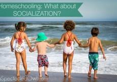 Homeschooling Socialization