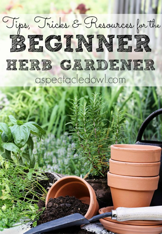 Tips, Tricks U0026 Resources To Grow Your Own Herb Garden