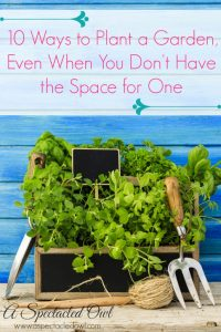 10 Ways to Plant a Garden, Even When You Don't Have the Space for One