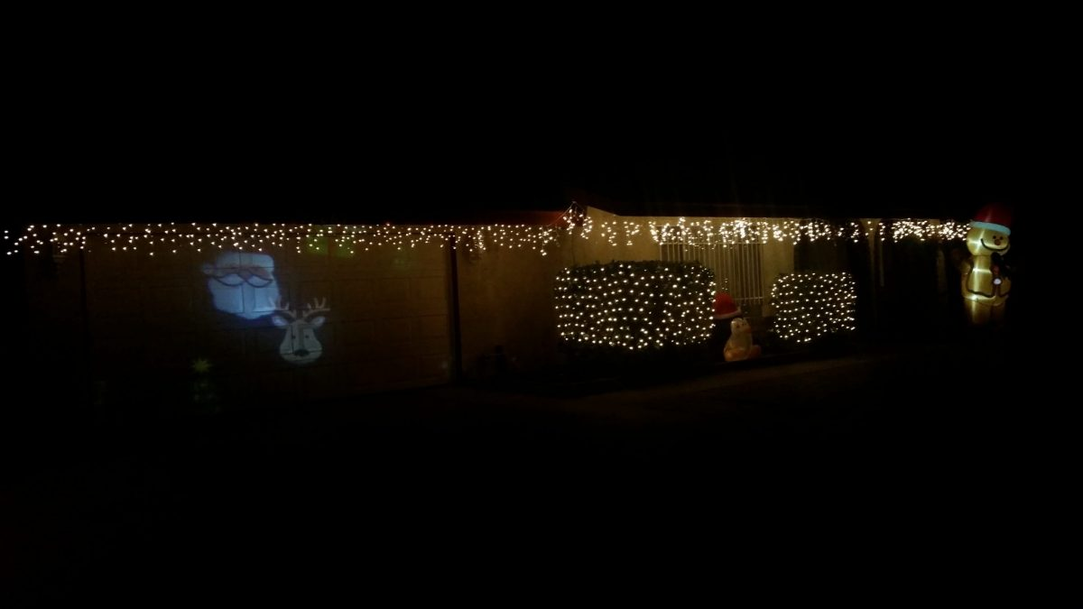 Last Minute Idea for Outdoor Christmas Decorating