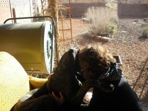 Great Dane Puppy Hugging Human