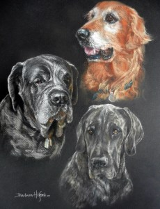 Painting of 3 dogs by Barbara J. Hilford