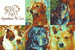 Aspenbloom Pet Care banner