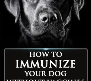 Immunizing NOT Vaccinating