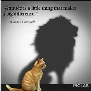 Attitude is a BIG thing