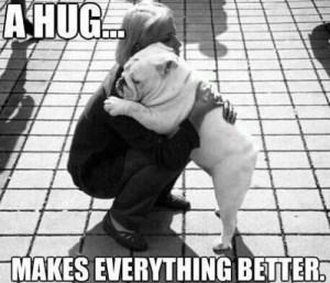 bulldog hugging person