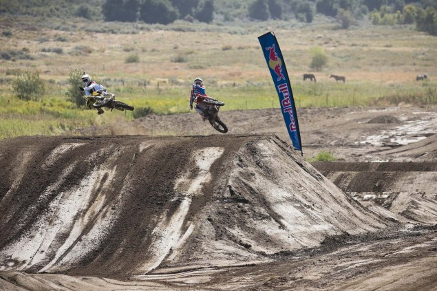 (L-R) James Stewart and Malcolm Stewart - Action